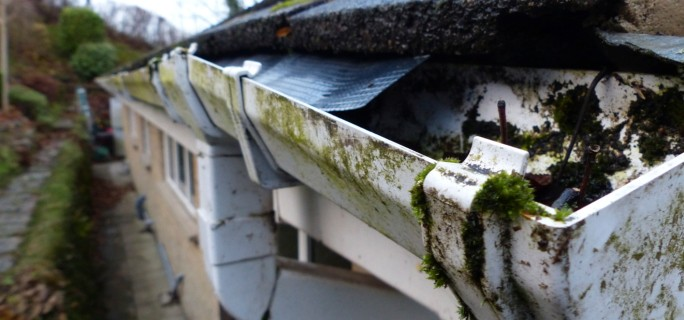 A rusted gutter